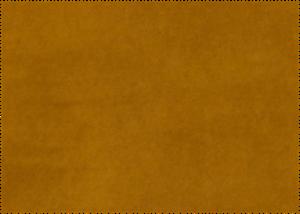 bellagio 514