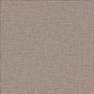 toucan 156