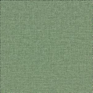 toucan 387